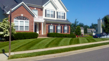 Highesville Lawn care